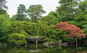 Bridge Under Trees Beside Body Of Water